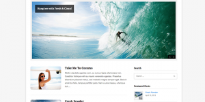Fresh clean wordpress theme